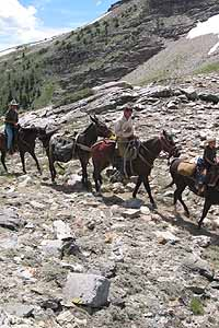 Elko area Guides & Outfitters - Horseback explorations are popular with visitors