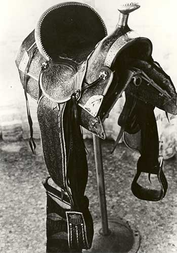 The Gold Medal Saddle 1904