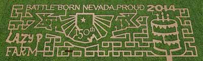 2014 corn maze, Lazy P Adventure Farm, Winnemucca Nevada