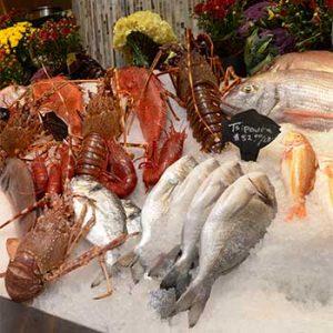 seafood at Estiatorio_Milos