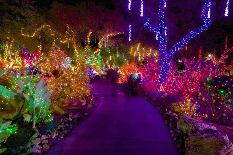 Holiday lights at the Ethel M Cactus Garden