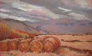 The Keddy Ranch Hay Meadow by Sidne Teske of Tuscarora