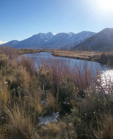 A beautiful view from the River Fork Ranch Trail in Carson Valley