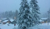 NevadaGram #187 - Snowbound at Tahoe, Nevada Correspondence, Comstock Mining Update