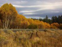 South Lake Tahoe Correspondence - November 2018
