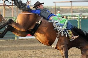 Silver State International Rodeo