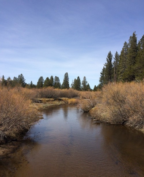 The Upper Truckee River at South Lake Tahoe