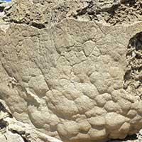 Ancient petroglyphs at Winnemucca Lake Nevada