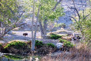 Ash Springs Nevada