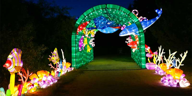 """Dragon Lights at the Wilbur May Center, Reno during Artown"""