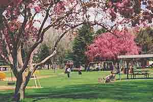 Elko City Park