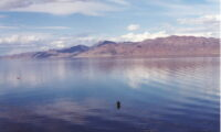 A Fisherman wades at Pyramid Lake