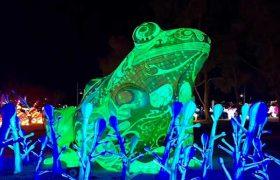Dragon Lights at the Wilbur May Center, Reno