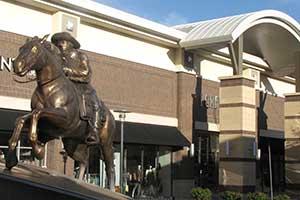 Calling horse at Legends, Sparks Nevada