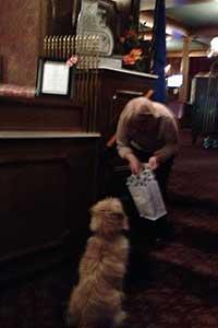 Shorty gets treats at the Mizpah