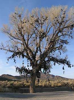Shoe Tree, US 50 East of Fallon Nevada