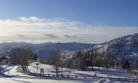 Winter scene in Silver