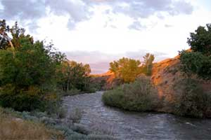 West Walker River at Wellington Nevada