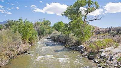 Wovoka Wilderness Area, Nevada